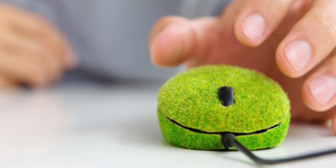 6 eco-friendly habits for the office